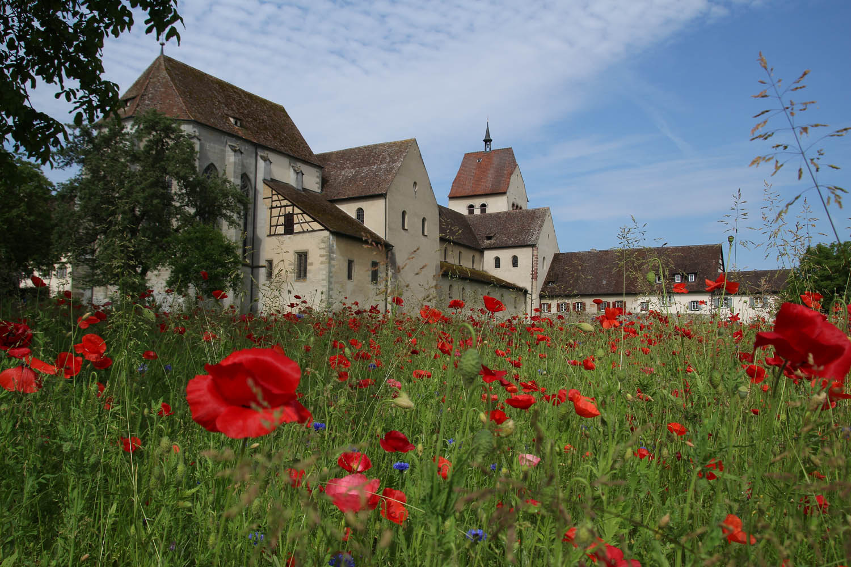 Reichenau Münster